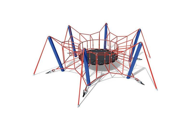 Spider Regular