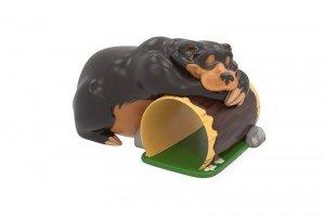 BLACK BEAR SLEEPING OVER LOG TUNNEL CLIMBER 1